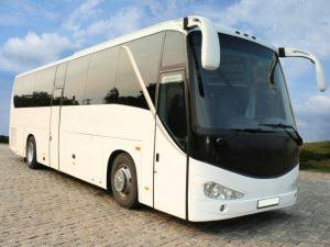 Coachbus (15)